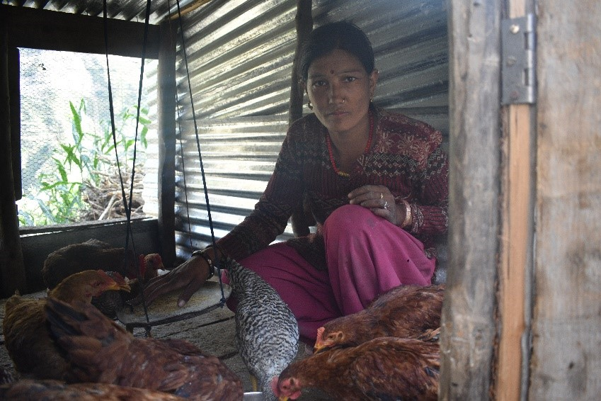 Ms.Suntali Kami with her chickens